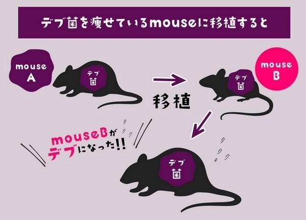 kuroshio04.jpg